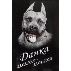 Купить памятник гранитный для собаки с ручной гравировкой портрета 60х40х3