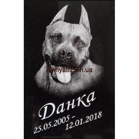 Памятник для собаки с ручной гравировкой портрета 60х40х3